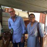 Diese Kuh werden wir für ein Fatima Boardinghouse kaufen